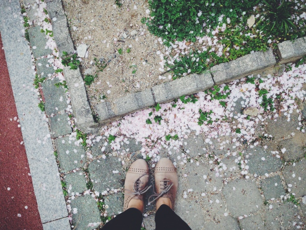 Shoes and Petals